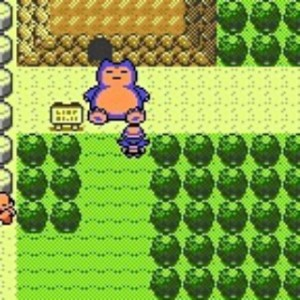 And some things just hadn't changed, like Snorlax's ability to get in your way.