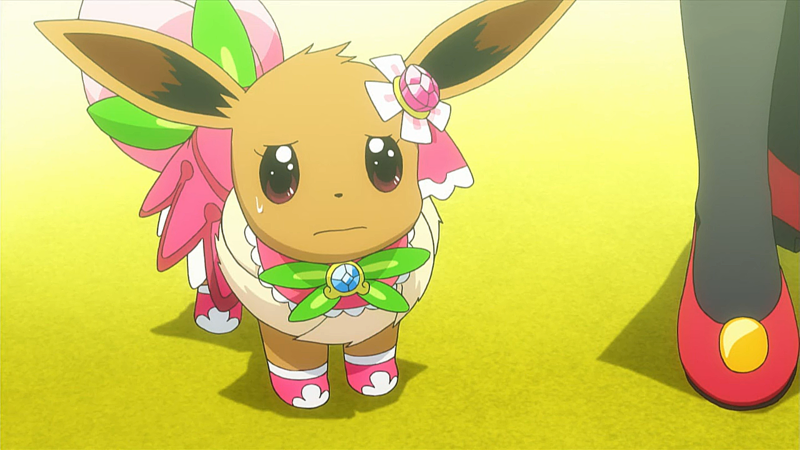 Caring For Your Eevee