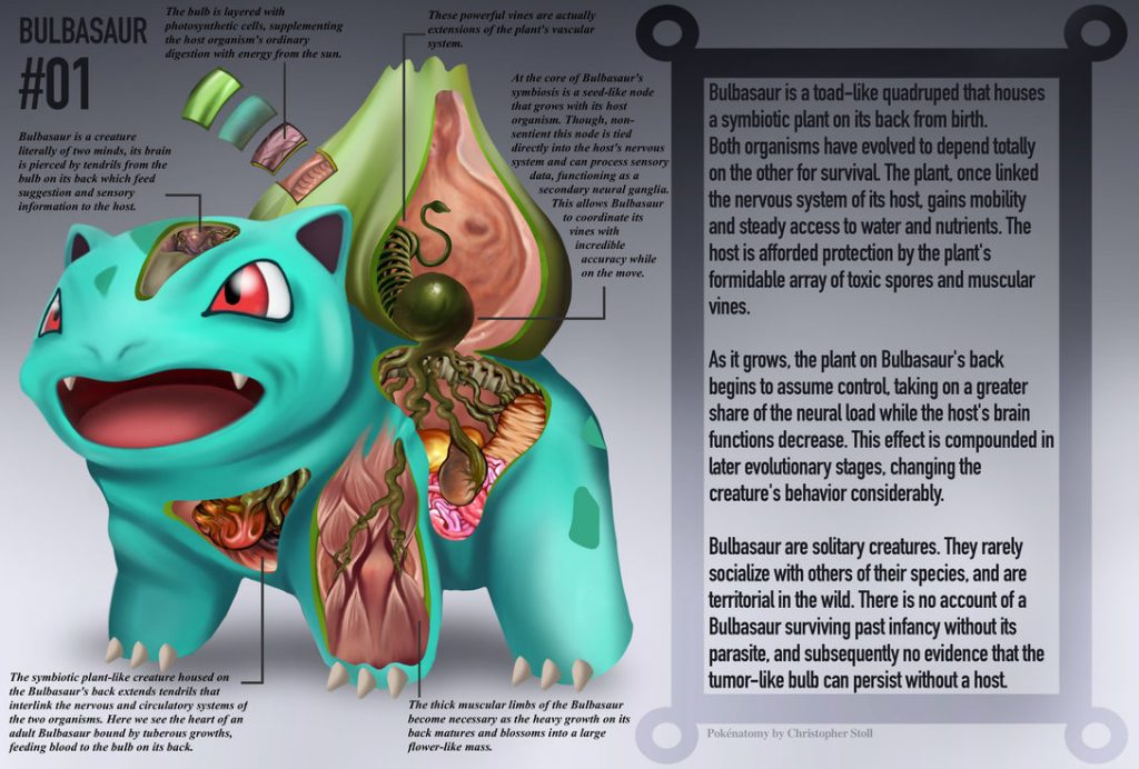 Poknatomy An In Depth Look At The Anatomy Of Pokmon Pokemon Go Tips