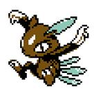 First brown sneasel